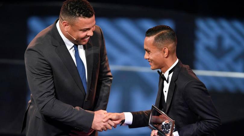 Anugerah Faiz Subri, Cadangan Yang Hanya Impian